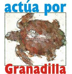 20051220121223-actua-por-granadilla.jpg