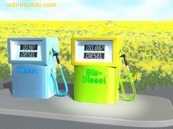 20060926121859-biocombustible.jpg