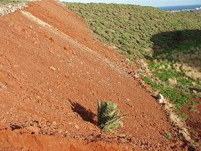 20061217122621-vistas-de-ingenio-mini.jpg