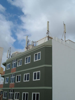 20070101211148-antenas-clavellinas.jpg
