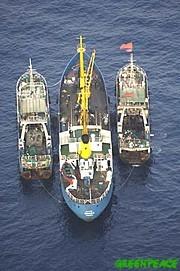 20070325214757-el-barco-de-greenpeace-espera-3.jpg