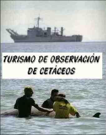 MANIOBRAS_turismo.JPG