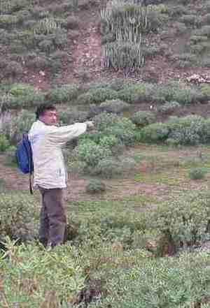 20051218113916-carlos-mini.jpg