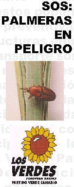 20060210104533-sos-picudo.jpg