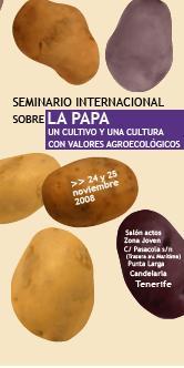 20081027152801-seminario-papa.jpg