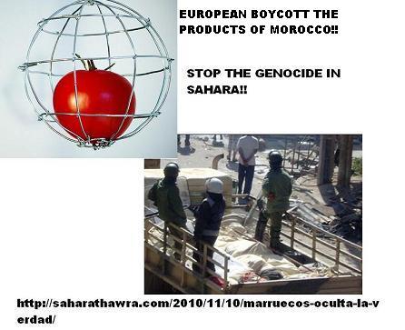 20101112141531-boicot.jpg