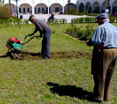 20101127152408-abuelos.jpg